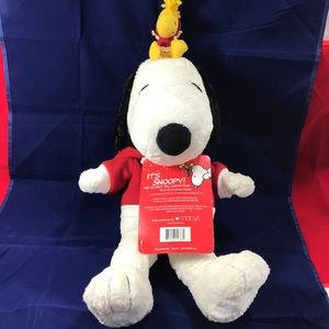 Snoopy and His Best Pal Woodstock Plush With Radio